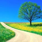 Tu Camino Espiritual